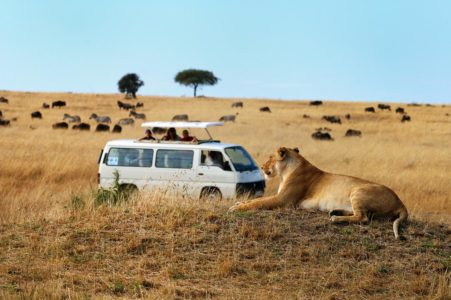 2 nights / 3 days Masai Mara Road packages