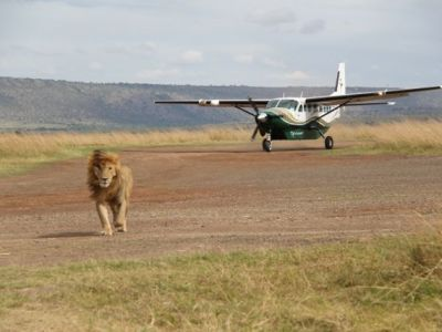 3 Day Masai Mara Flying Safari
