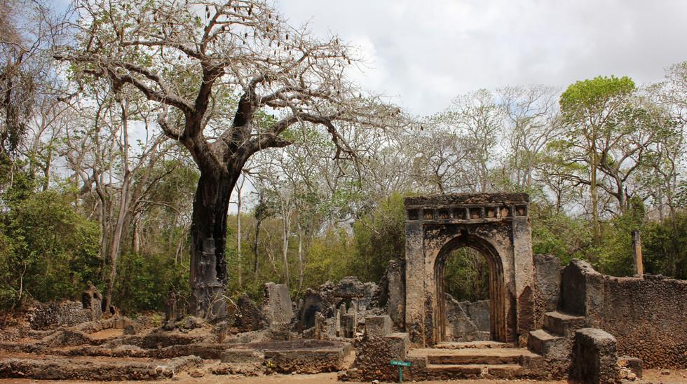 Gedi Ruins Malindi Beach