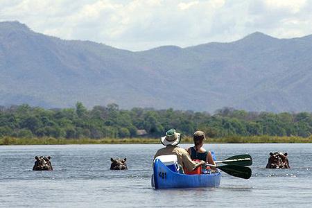Boat Safari Zambezi