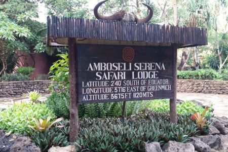 Amboseli Flying Safari